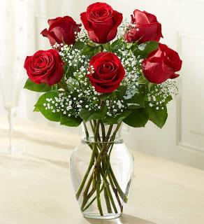Love\'s Embraceâ?¢ Roses - Red