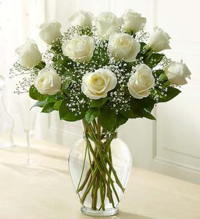 Rose Eleganceâ?¢ Premium Long Stem White Roses