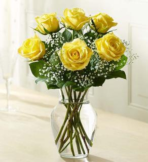 Love\'s Embrace Roses Yellow