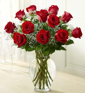 Rose Eleganceâ?¢ Premium Long Stem Red Roses